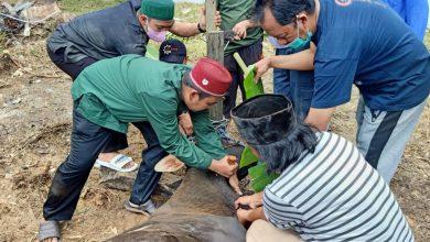 Photo of Warga RT 26, Laksanakan Penyembelihan Hewan Kurban, Dengan Perketat Protokol Kesehatan